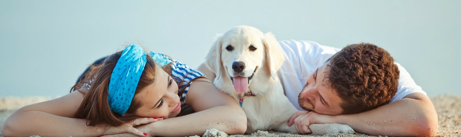 Two people and a dog lying on sand at the beach