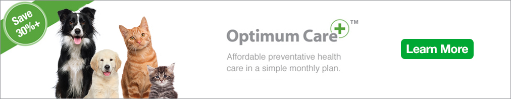 optimum-care